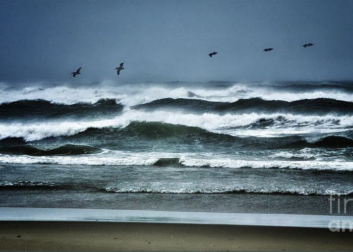North Carolina Greeting Card featuring the photograph Riders On The Storm 1 - Outer Banks by Dan Carmichael