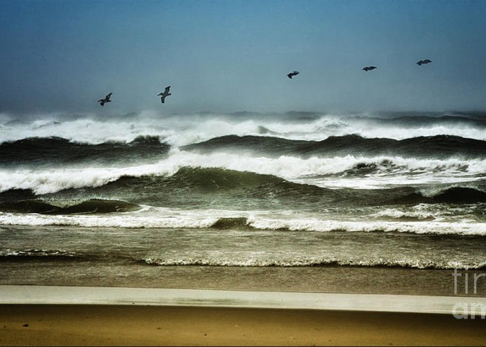 North Carolina Greeting Card featuring the photograph Riders On The Storm II - Outer Banks by Dan Carmichael