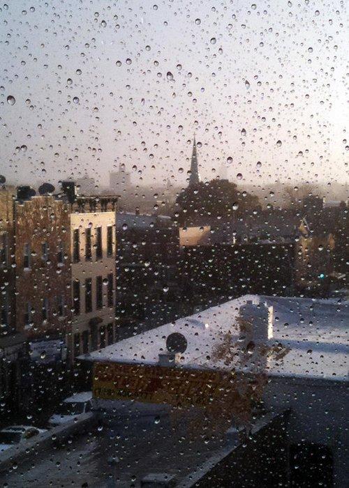 Mieczyslaw Greeting Card featuring the photograph Ridgewood Wet With Rain by Mieczyslaw Rudek Mietko