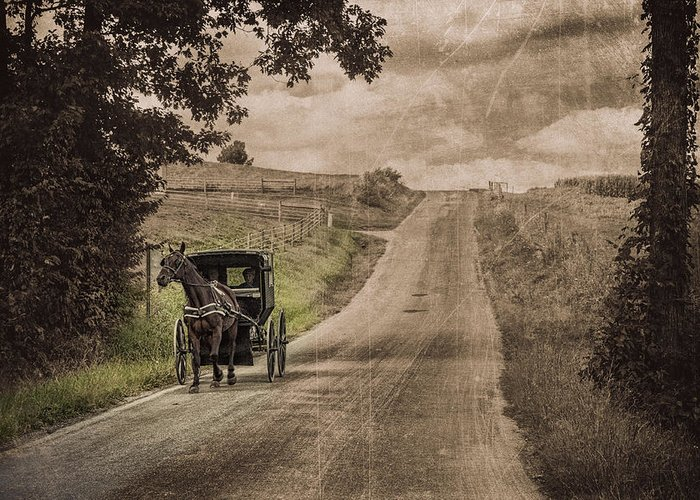 Horse And Buggies Greeting Cards