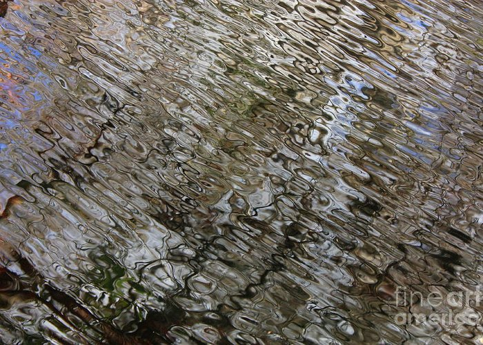Nature Abstract Greeting Card featuring the photograph Ripples In The Swamp by Carol Groenen