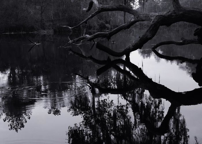Ripples Of Black And White Greeting Card featuring the photograph Ripples Of Black And White by Warren Thompson