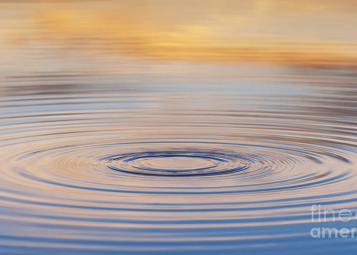 Water Ripple Greeting Card featuring the photograph Ripples On A Still Pond by Tim Gainey