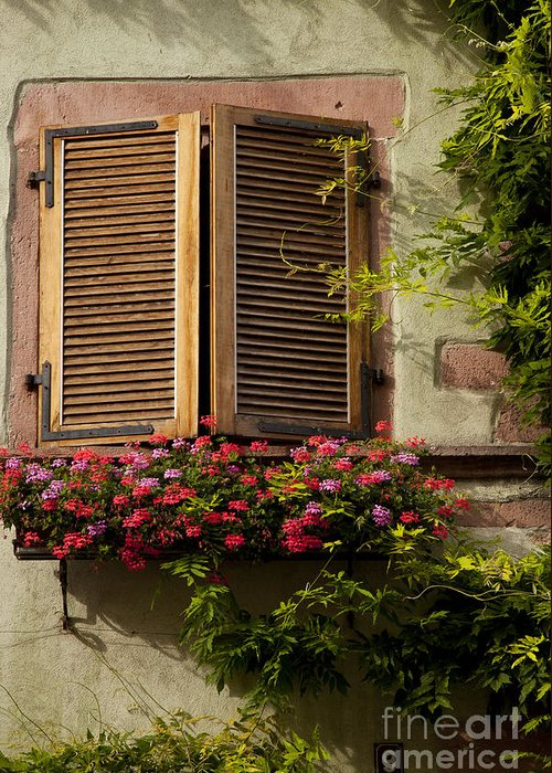 Riquewihr Greeting Card featuring the photograph Riquewihr Window by Brian Jannsen