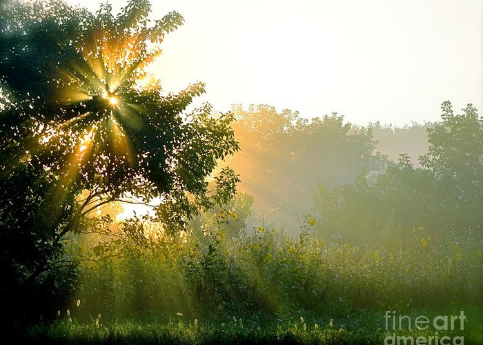 Color Photography Greeting Card featuring the photograph Rise And Shine by Sue Stefanowicz