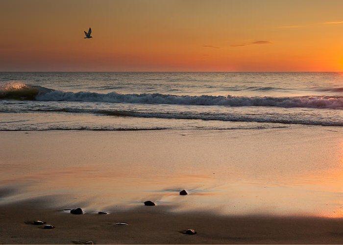 Cape Cod National Seashore Greeting Card featuring the photograph Rising Sun by Bill Wakeley