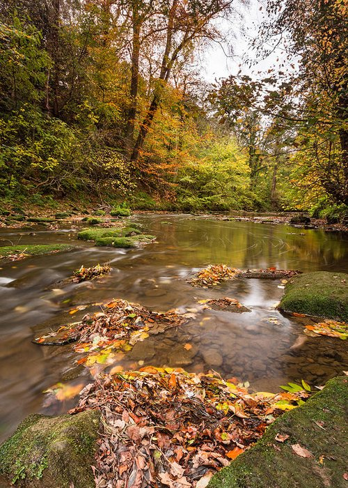 Northumberland Greeting Card featuring the photograph River Blyth In Autumn Vertical by David Head