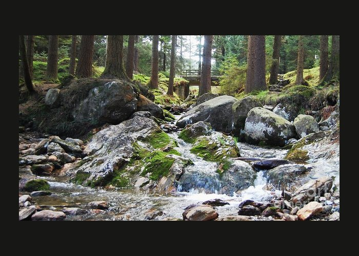 Ireland Art River Woodland Outdoors Rocks Travel Stock Shot Rural Wicklow Countryside Sylvan Setting Greeting Card featuring the photograph A River Scene In Wicklow, Ireland by Courtney Dagan