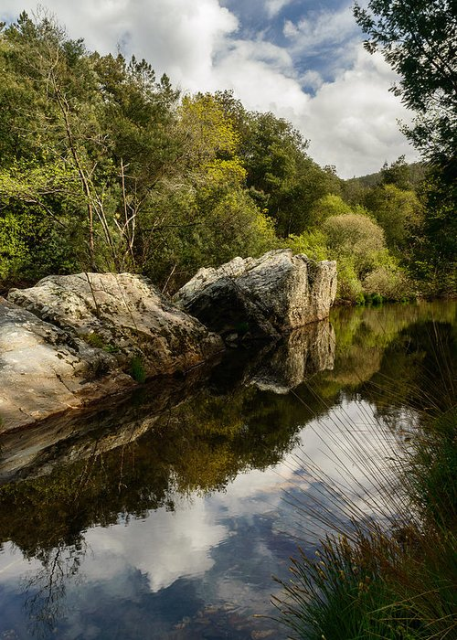 River Greeting Card featuring the photograph River Reflections II by Marco Oliveira