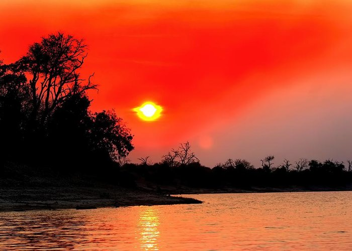 Chobe River Greeting Card featuring the photograph River Sunset by Amanda Stadther