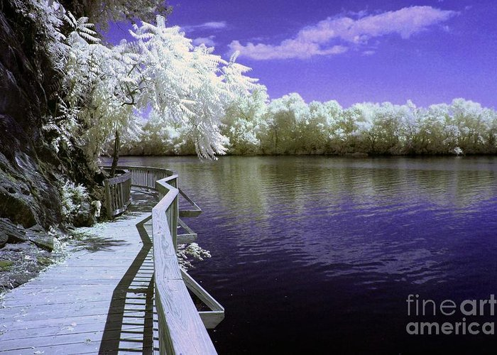 Infrared Greeting Card featuring the photograph River Walk by Paul W Faust - Impressions of Light