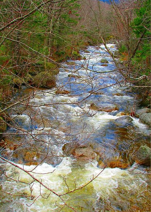 Nature Greeting Card featuring the photograph Roaring Brook by William Hill