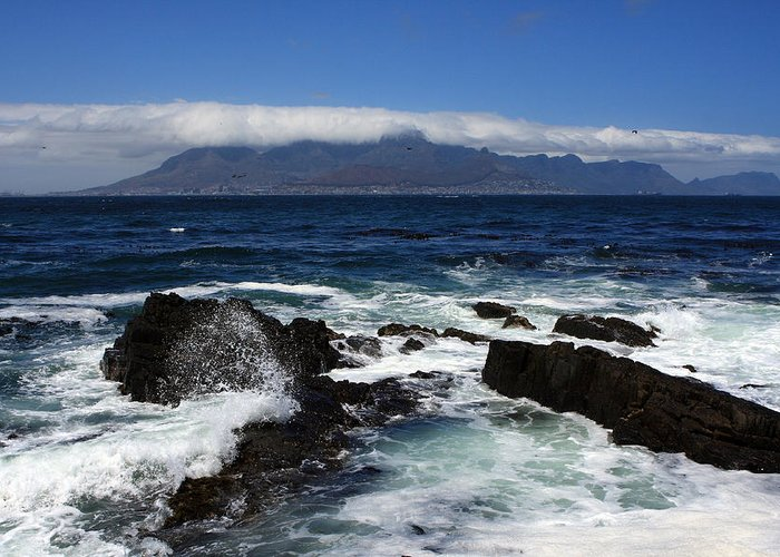 Africa Greeting Card featuring the photograph Robben Island View by Aidan Moran