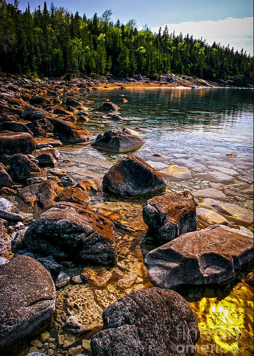 Bay Greeting Card featuring the photograph Rocks At Shore Of Georgian Bay by Elena Elisseeva