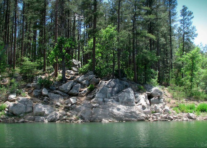 Goldwater Lake Greeting Card featuring the photograph Rocky Lakeshore by Aaron Burrows