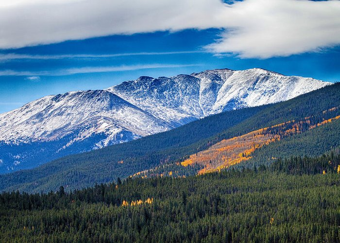 Snow Greeting Card featuring the photograph Rocky Mountains Independence Pass by James BO Insogna