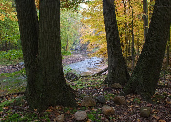 Ohio Greeting Card featuring the photograph Rocky River Autumn 4 by Frank Tozier