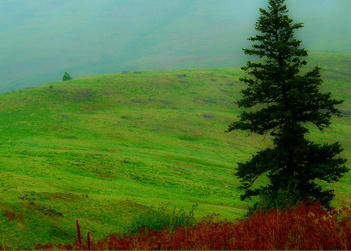 Scenery Greeting Card featuring the photograph Rolling Hills by Jody Hammock