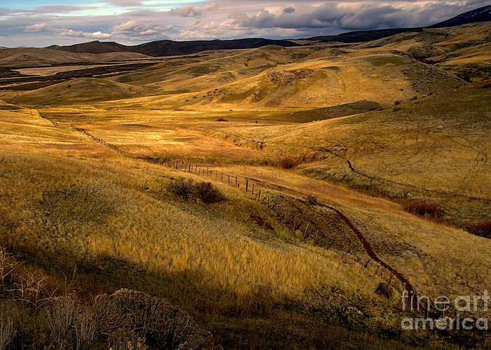 Landsacape Greeting Card featuring the photograph Rolling Hills by Robert Bales