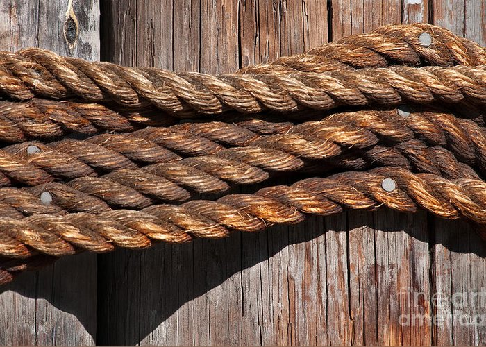 Rope Greeting Card featuring the photograph Roped by Dan Holm