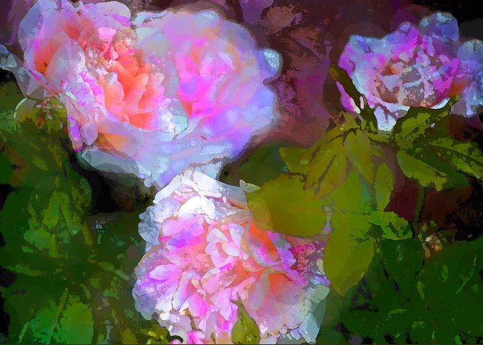 Floral Greeting Card featuring the photograph Rose 184 by Pamela Cooper