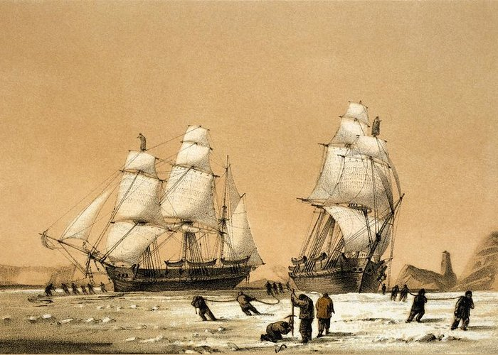 Hms Enterprise Greeting Card featuring the photograph Ross Arctic Search Expedition, 1848-9 by Science Photo Library