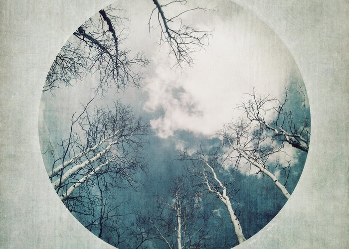Vignette Greeting Card featuring the photograph round treetops III by Priska Wettstein