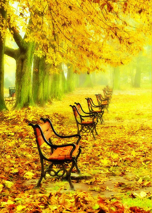 Alley Greeting Card featuring the photograph Row Of Red Benches In The Park by Jaroslaw Grudzinski