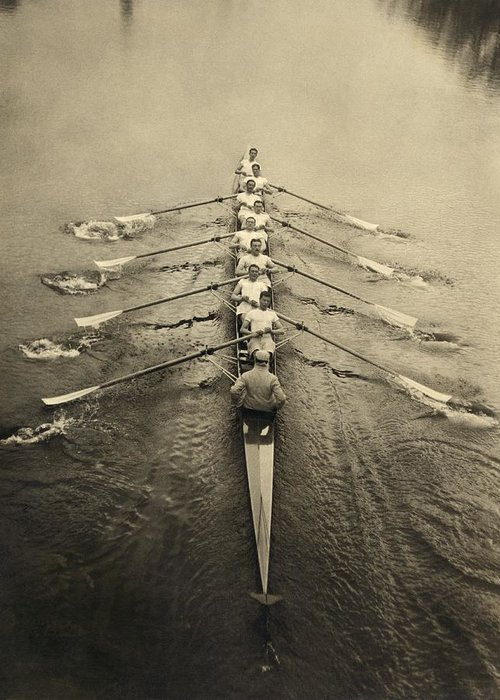 Human Greeting Card featuring the photograph Rowing Crew, Early 20th Century by Science Photo Library