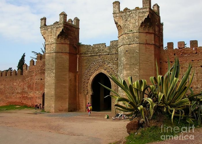 Morocco Greeting Card featuring the photograph Royal Grounds by Sophie Vigneault