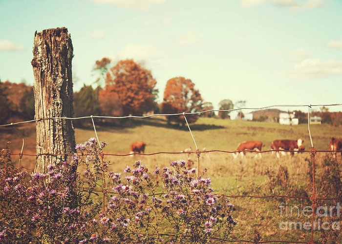 Agriculture Greeting Card featuring the photograph Rural Country Scene by Sandra Cunningham