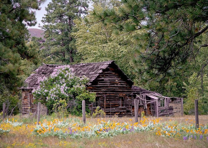 Cabin Greeting Card featuring the photograph Rustic Cabin In The Mountains by Athena Mckinzie