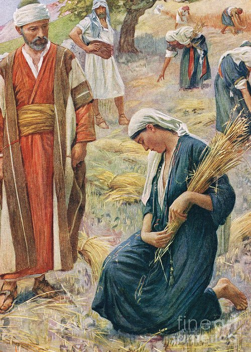 Book Of; Biblical; Boaz; Boaz's Field; Kneeling; Corn; Harvest; Harvesting; Reaping; Yield; Widow; Husband And Wife; Holy Land; Judea; Jew; Jewish; Corn Greeting Card featuring the painting Ruth by Harold Copping