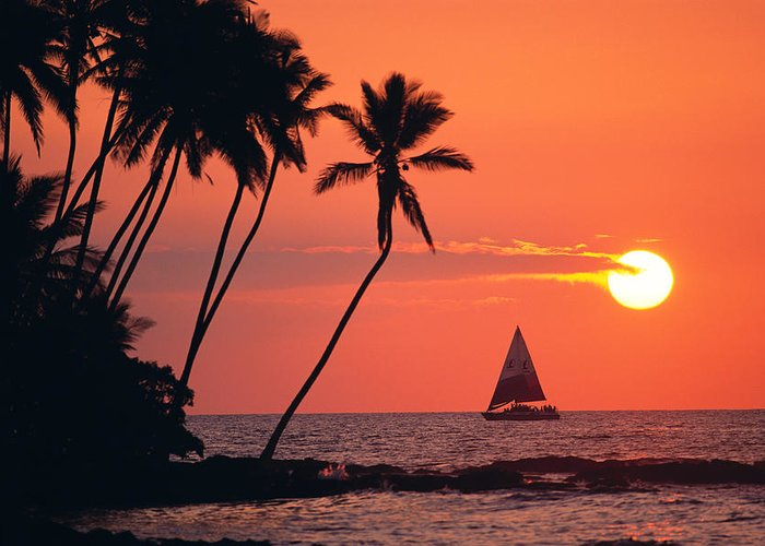 Big Island Greeting Card featuring the photograph Sailboat At Sunset by Bob Abraham - Printscapes