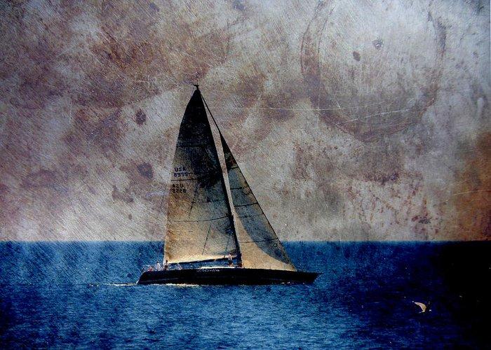 Lake Michigan Greeting Card featuring the digital art Sailboat Bird W Metal by Anita Burgermeister
