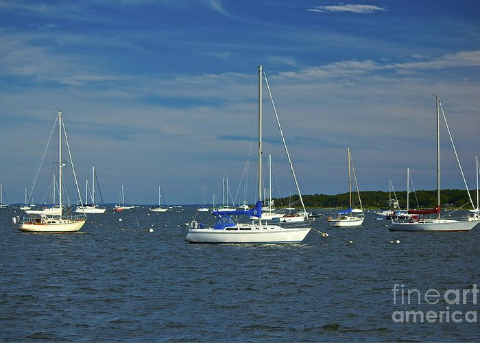 Sailboats Greeting Card featuring the photograph Sailboats by Amazing Jules