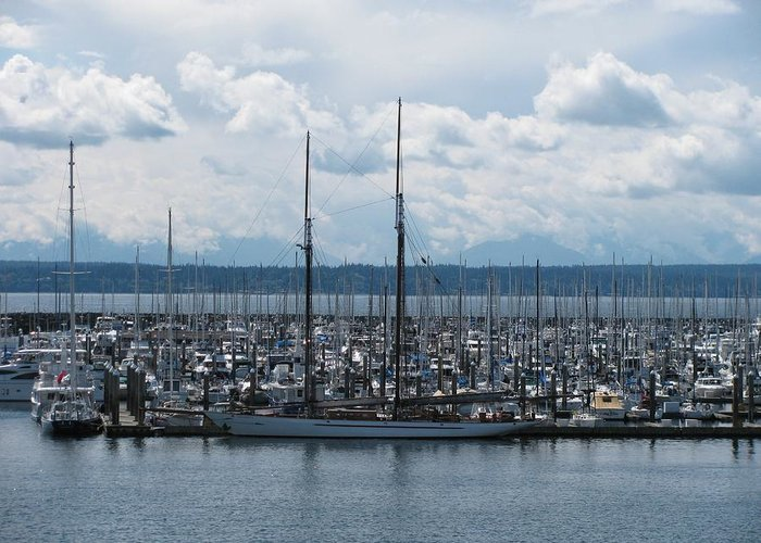Ransportation Greeting Card featuring the photograph Sailboats In Seattle by Steven Parker