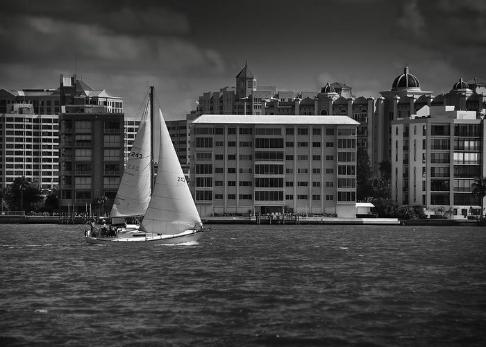 B&w Greeting Card featuring the photograph Sailing Away by Mario Celzner