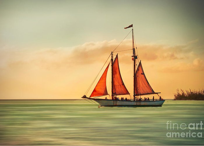 Sailing Greeting Card featuring the photograph Sailing Into The Sun by Hannes Cmarits