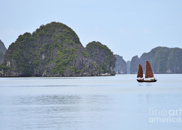 Junk Greeting Card featuring the photograph Sailing Junk Boats In Halong Bay by Sami Sarkis