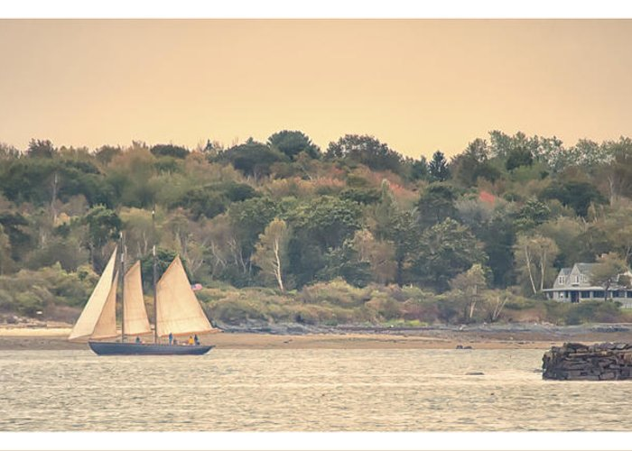 Bay Greeting Card featuring the photograph Sailing The Shoreline by Richard Bean