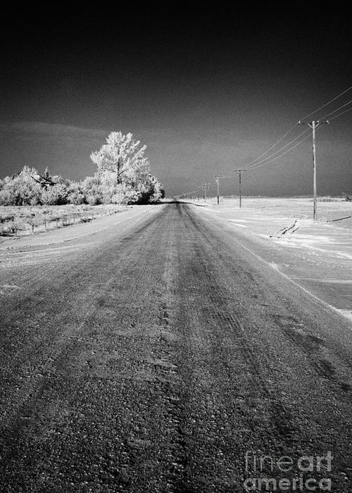 Salt Greeting Card featuring the photograph salt and grit covered rural small road in Forget Saskatchewan Canada by Joe Fox
