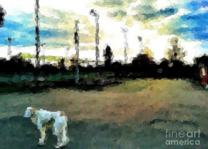 Dog Greeting Card featuring the painting Saluki by V Waddingham