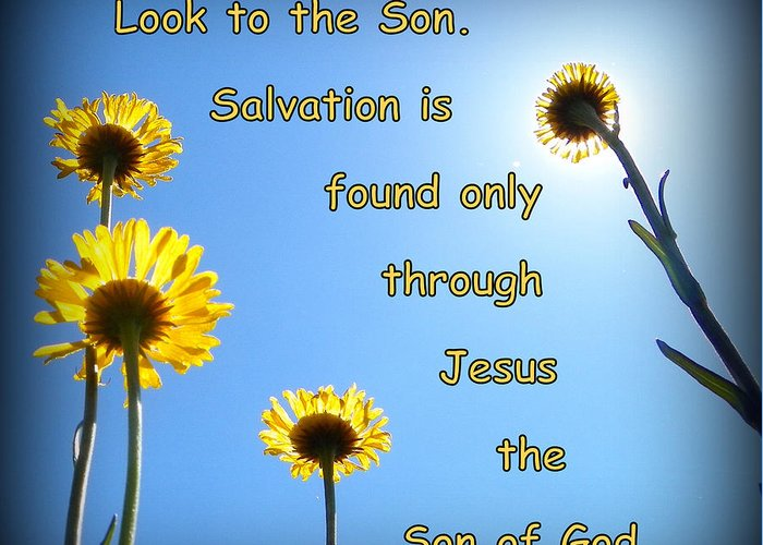 Flowers Greeting Card featuring the photograph Salvation In The Son by Sheri McLeroy