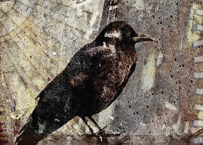Crow Greeting Card featuring the photograph Same Crow Different Day by Carol Leigh