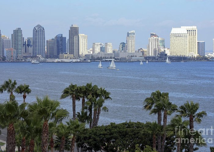 San Diego Greeting Card featuring the photograph San Diego Skyline by Sophie Vigneault