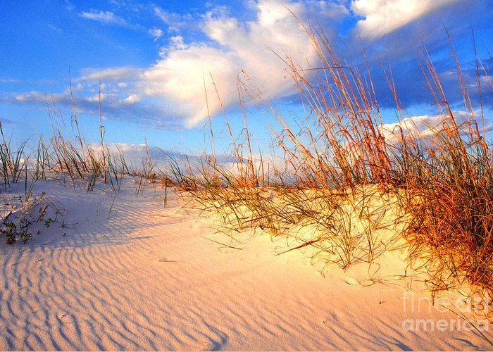 Beach Greeting Card featuring the photograph Sand Dune And Sea Oats At Sunset by Thomas R Fletcher