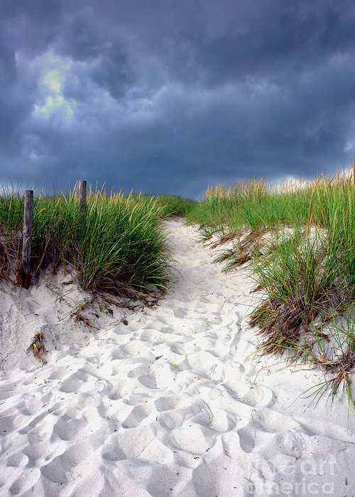 Beach Greeting Card featuring the photograph Sand Dune Under Storm by Olivier Le Queinec