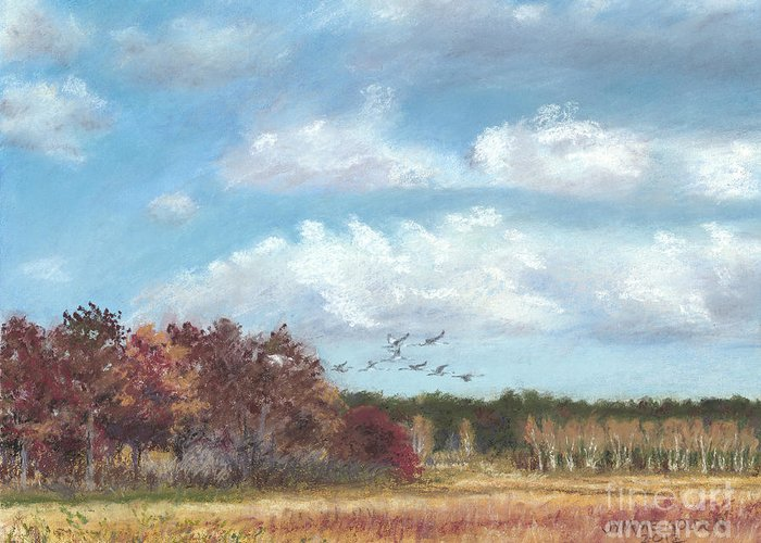 Sandhill Cranes Greeting Card featuring the painting Sandhill Cranes At Crex With Birch by Jymme Golden