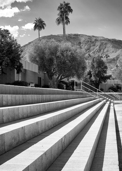 Sandpiper Greeting Card featuring the photograph Sandpiper Stairs Bw Palm Desert by William Dey
